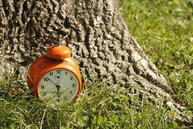 Von Kindern lernen: Die Zeit vergessen